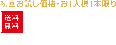 送料無料4200円